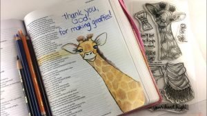 Give the gift of a Journaling Bible to a young person